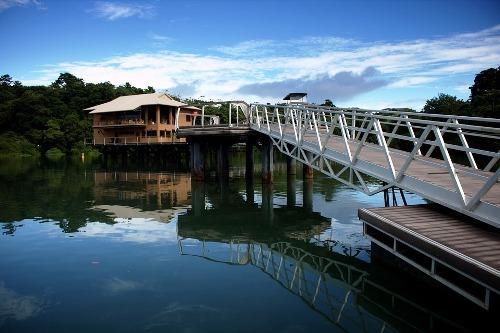 Panama Rundreisen in den Regenwald