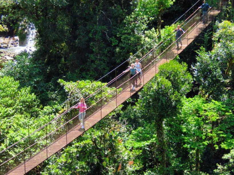 Boquete Trek in Panama