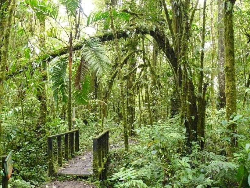 Quetztal Trail